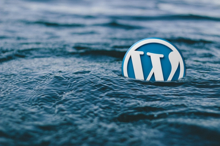 Wajib Tahu! Pro dan Kontra WordPress